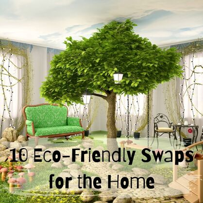 10 Eco-Friendly Swaps for the Home